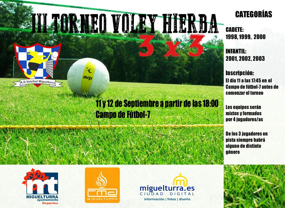 Tercer Torneo Vóley Hierba Ferias y Fiestas de Miguelturra 2014