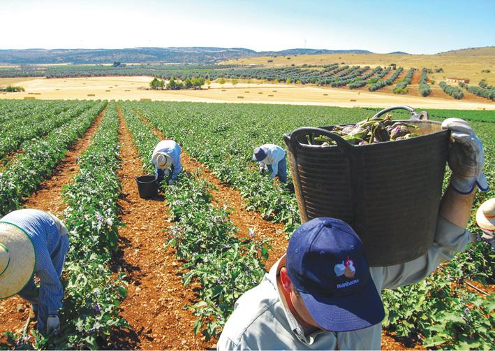 Nuestros productos agroalimentarios. Una provincia para comérsela