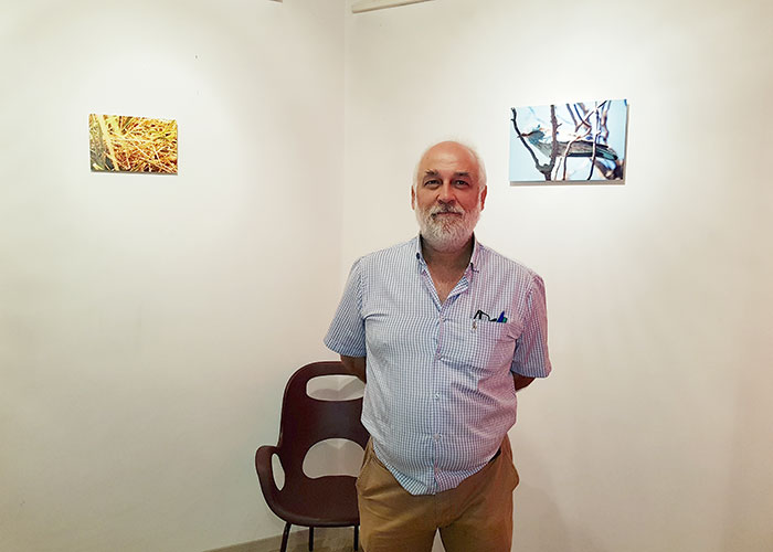 La Galería Artecasa acoge 'Miradas furtivas', una interesante exposición fotográfica de Francisco Zamora sobre la vida en miniatura de nuestro entorno