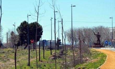 El Plan Municipal de Arbolado 2018 permitirá reforestar la ciudad con casi 300 nuevas especies