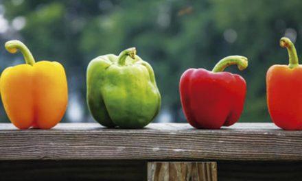 Tres colores pero un solo pimiento