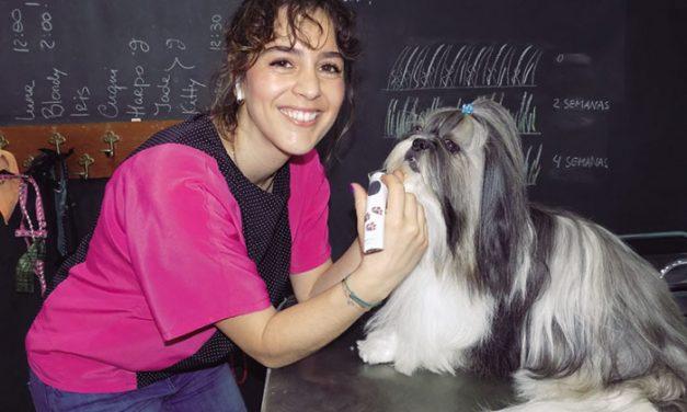 """La ciudadrealeña Patricia Campos, """"doctora cum laude"""" del estilismo y la peluquería canina de España y reconocida a máximo nivel internacional"""