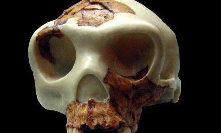 Resumen 1: Prehistoria de la Península Ibérica