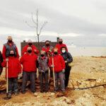 Los trabajadores del programa Recual de Carrión de Calatrava celebran el Día del Árbol con la plantación de varios ejemplares